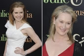 Meryl Streep & Amy Adams, Julia & Julia premier, Chinese Theater, Hollywood