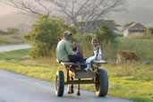 Countryside transportation