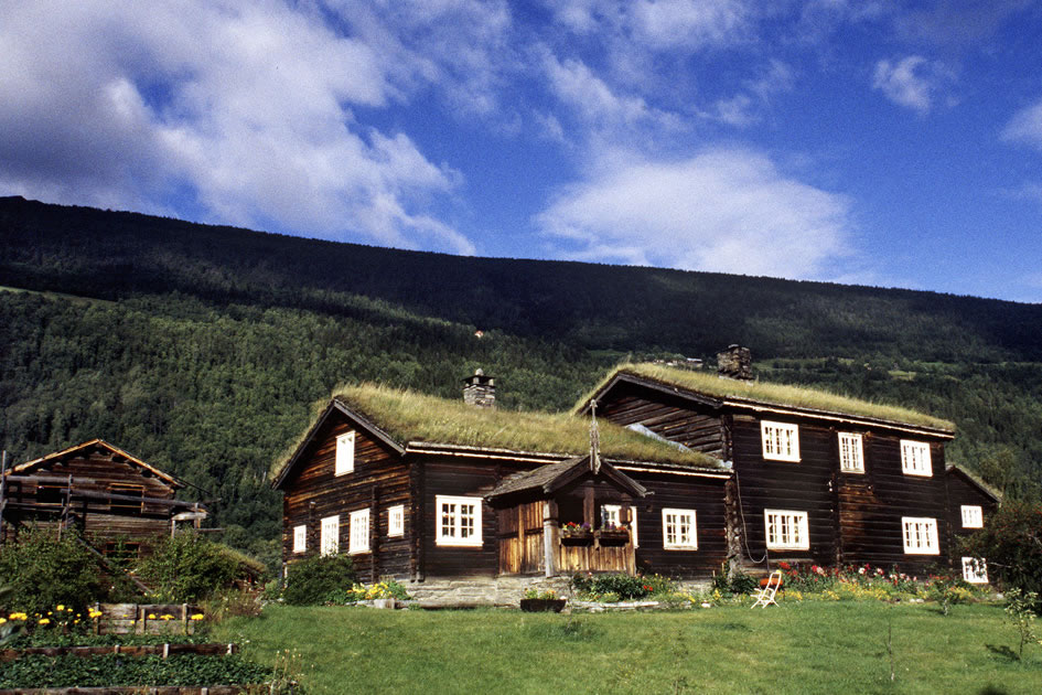 Traditional grass roof house