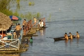 Life in the Amazon Basin near Iquitos