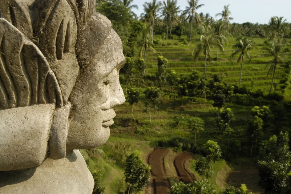 The Guardian of the Ricefield, Bali