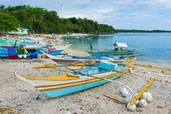 Fishing boats, Malapascua