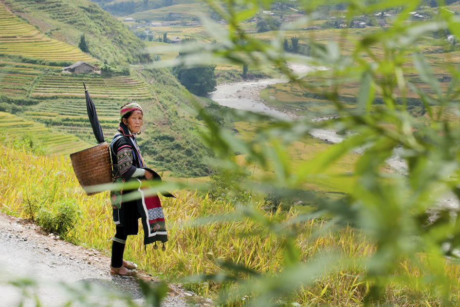 Hill tribe woman, Sapa